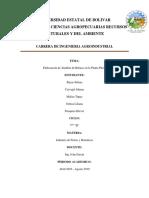 Almibar de Babaco Informe