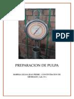 Preparacion de Pulpa Nº 1