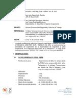 Informe Quincenal Nº 001