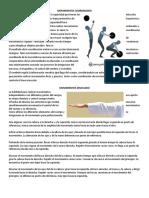 Educacion Fisica Movimiento, Carrera