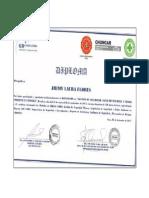 Diplomado en Gestion de La Seguridad, Salud Ocupacional y Medio Ambiente