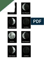 Fases de La Lunaa