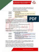 Capitulo_mediastino.pdf