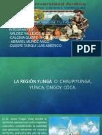 region yunga-1.pptx