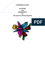 Flowering Plants worksheet
