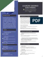 CV EU Aaron Osorio.pdf