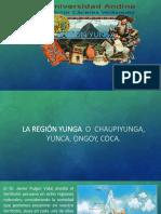 Region Yunga 1