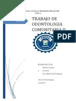 COMUNITARIA 1.docx