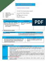 SESION CUIDAMOS LOS SENTIDOS.docx