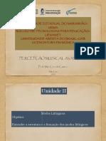 Slide de Conteúdo - Unidade II.pdf