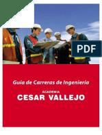 Guia Carreras Cv