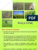 crops classification