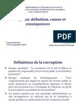 SNACTUN4.2_Corruptiondefinition,causesandconsequencesVKalnins_FRA.pdf.pdf