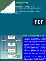 INTENZIONALITA' E ANOSOGNOSIA.pdf