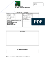 PLAN DE AUDITORIA DEFINITIVO entrega.docx