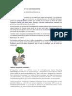 Tipos de Flujometros y Su Funcionamiento