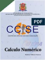 CALCULO_NUMERICO.pdf