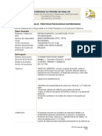 3. FPT-PP_Plan de Trabajo_PPS (7).docx
