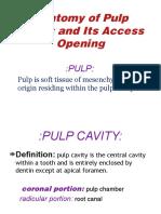 access Cavity Preparation.pptx