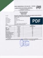 Analisis Fco Qco Pozo Aynacha451
