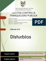 Delitos Contra La Tranquilidad Publica 22