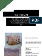 DERMATOLOGIA PRIMERA CLASE