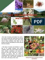 146705898-Flora-and-fauna-of-jammu-and-kashmir-pptx.pdf