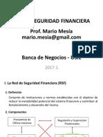 08 Red de Seguridad Financiera y Fsd