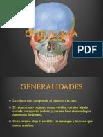 Anatomia Axial 2019 (2)