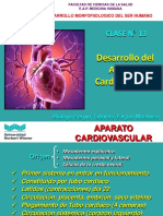 Clase N 13 Aparato Cardiovascular