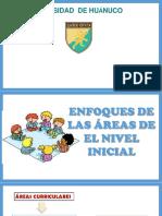 ENFOQUES DE AREAS DEL NIVEL INICIAL - PERU