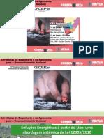 APRESENTAÇÃO - Poços de Caldas 14-06 rev 11.pdf