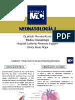PPT-NEONATOLOGIA1-PR.pdf