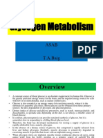 Glycogen Metabolism