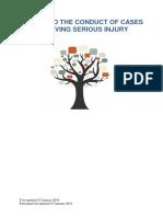Serious Injury Guide 20190206