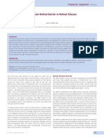 The Blood–Retinal Barrier in Retinal Disease.pdf