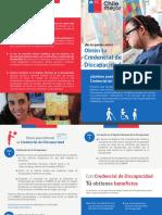 DIPTICO Credencial Discapacidad.pdf