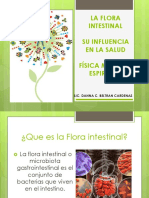 Flora Intestinal Iglesia España