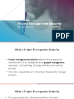 PM3 model of project management maturity