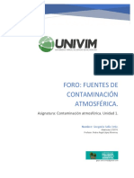 Gsolis_Actividad1. Fuentes de Contaminacion Atmosferica