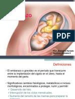 Embarazo NH II.pdf