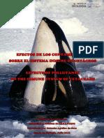 Efectos de Los Contaminantes Sobre El Sistema Inmune de Cetaceos (1)