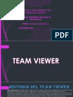 Exposicion Del Team Viwer