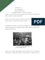 Trabalho 2 - HVII - Formas de Contribuição de Índios e Negros No Processo de Colonização - Marianna Santos Corrêa