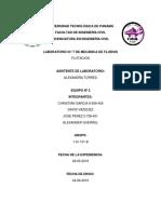 Informe Flotacion