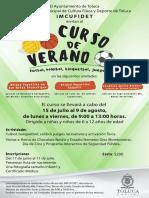 Curso Verano Toluca 2019