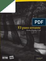 PasoErrante2