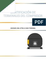 Terminales Del Compreso