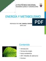 Clase 9 Energía