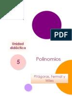 Pitagoras Fermat Wiles